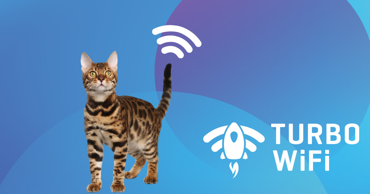 www.telekom.si